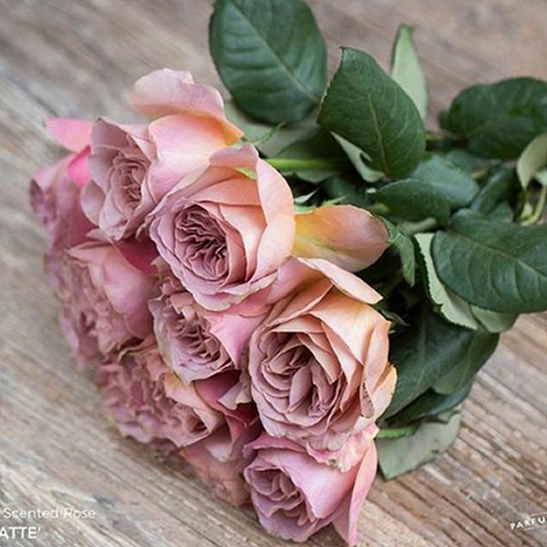 flower-trends-roses