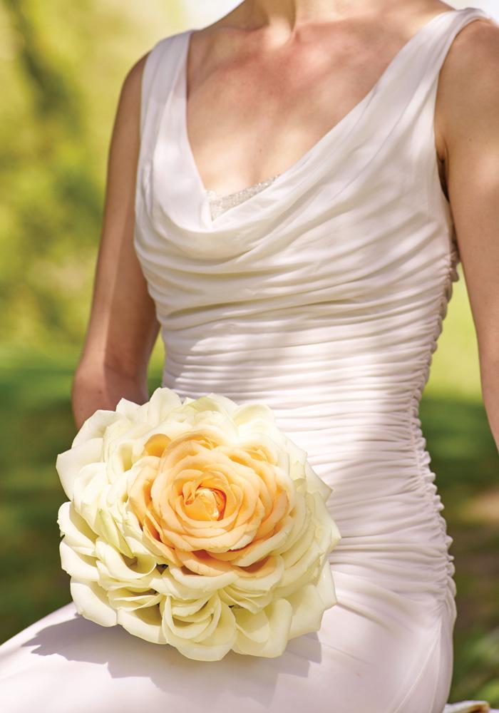 interflora-carmen-rose