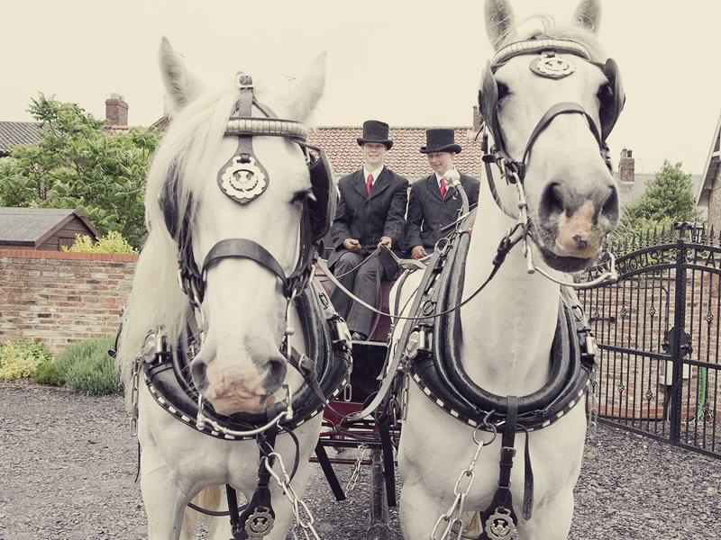 Ready to swap a classic motor for transport that makes a statement? Start with these six wedding car alternatives, fit for every wedding style and theme.