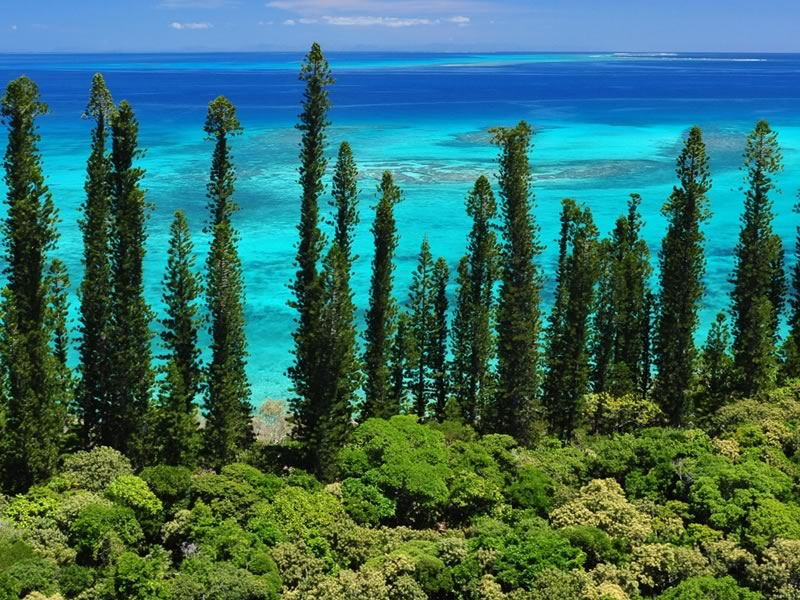 The islands of New Caledonia sit in the Pacific Ocean, blessed with coral reef and pristine beaches. Aircalin just made honeymoons there even better...