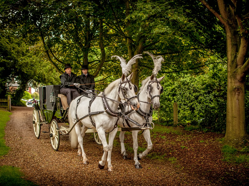 Country couple, Amy & Mark made their day completely personal with a skiing themed cake, a horse drawn carriage and a little surprise for the wedding guests...