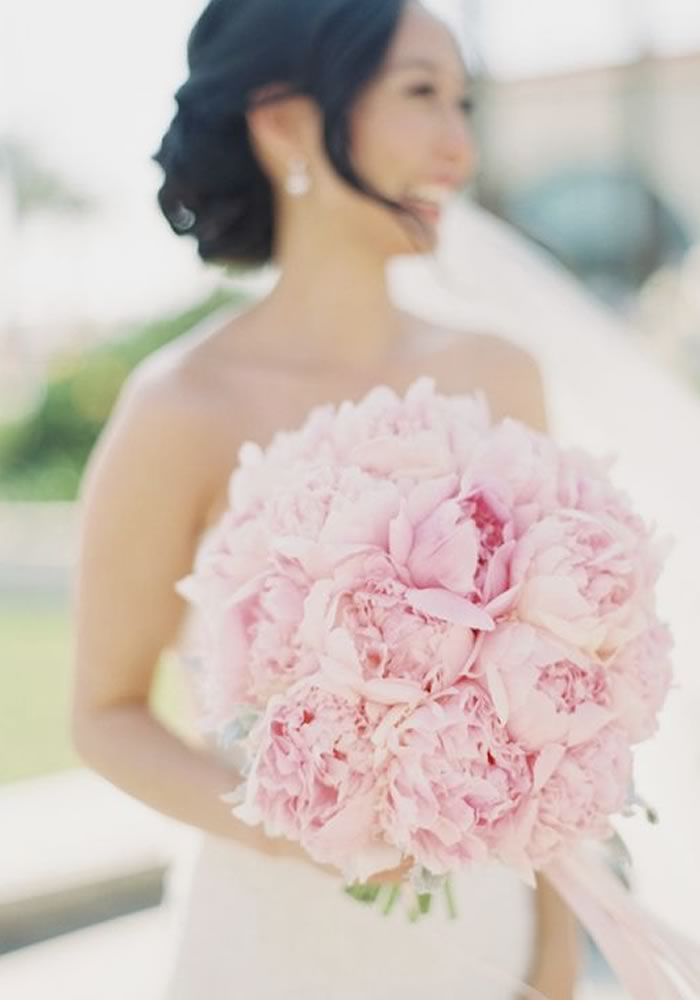 Fall In Love With Pink Peonies And Find All The Inspiration You Need To Have Them