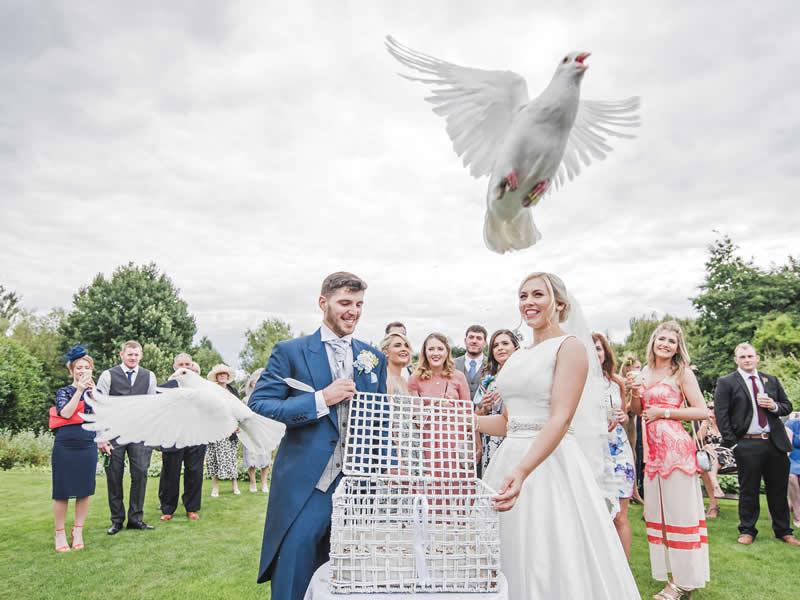 Wedding entertainment ideas3