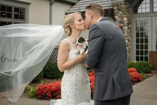The cutest pics that have got couples swapping flower bouquets for puppies! ©Alycia Faye Photography
