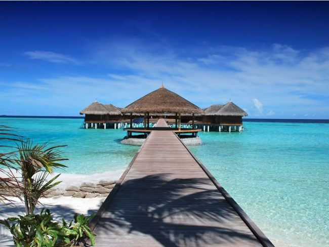 black-friday-honeymoon-deals