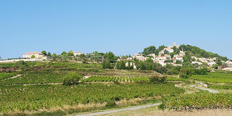 WIN A Case Of Côtes du Rhône Artisan Wine Worth Over £160!