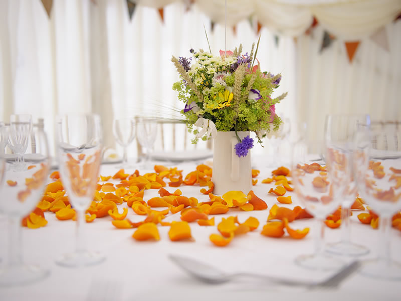 Win Your Wedding Confetti Package With Shropshire Petals Worth Over £160!