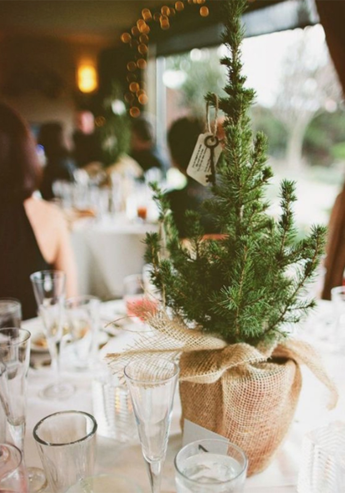 Find pretty winter wedding decoration ideas by taking Christmas trees for your inspiration! From centrepieces
