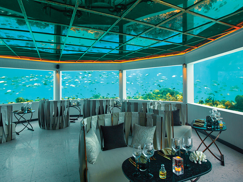 Ozen_Maldives_M6m - Minus Six Meters Interior with Views