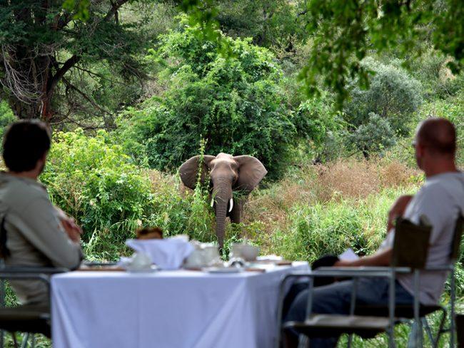 Singita Lebombo Lodge - 25 World-Beating Honeymoon Rooms With A View!