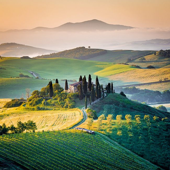 The Best Places to Get Married in Italy tuscan hills