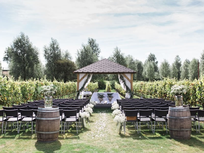 Pick Of The Crop: Best UK Vineyard Wedding Venues