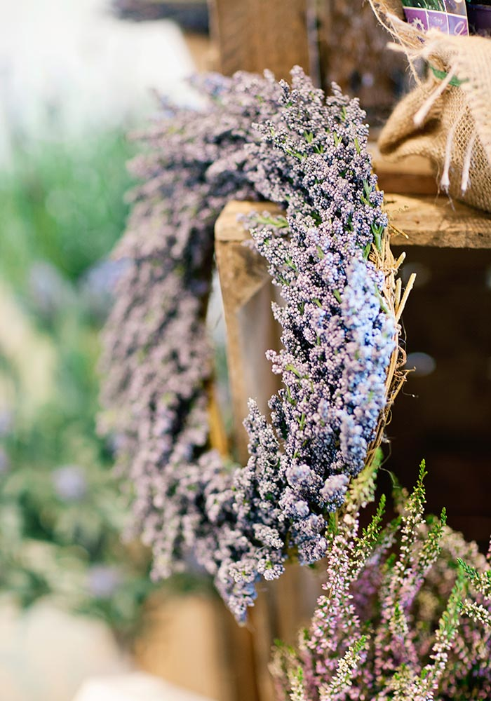 Joelle-Marie and Peter married in a wonderfully whimsical lavender wedding. See the bride's Provence-inspired country flowers and dreamy Watters dress here