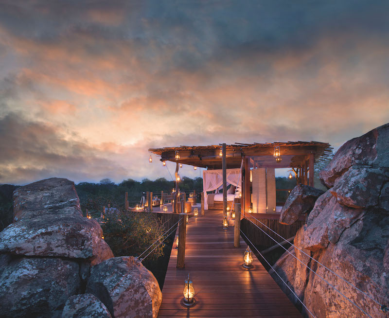 Kingston Treehouse, South Africa