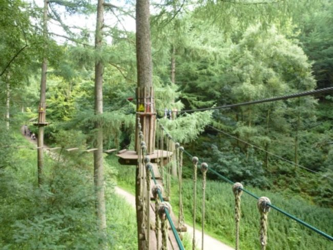 hen-party-destinations-go-ape