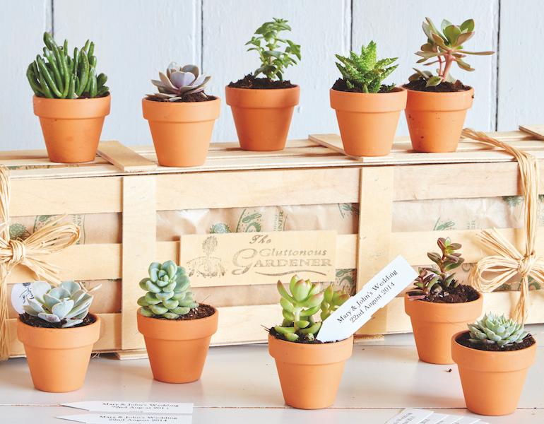 Plant favours