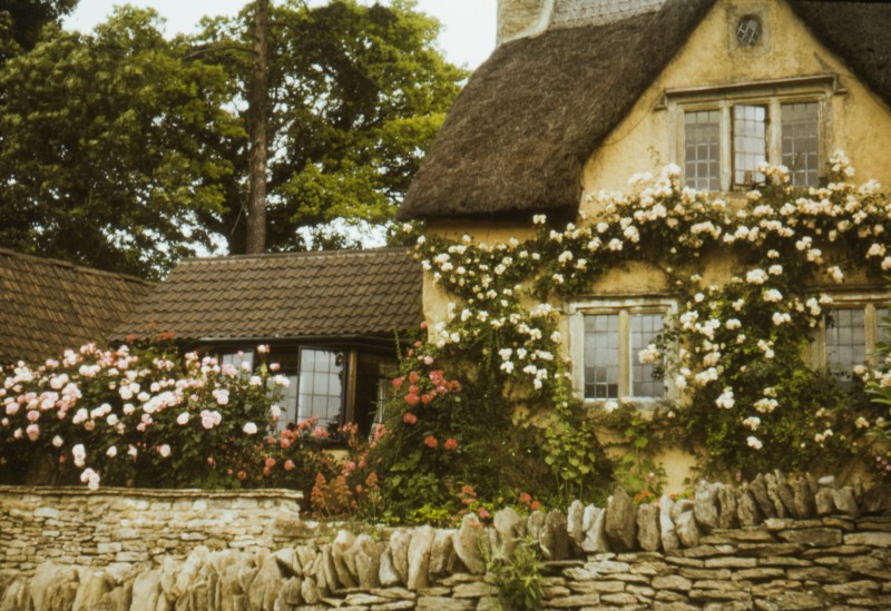romantic-cottage-honeymoon-trends