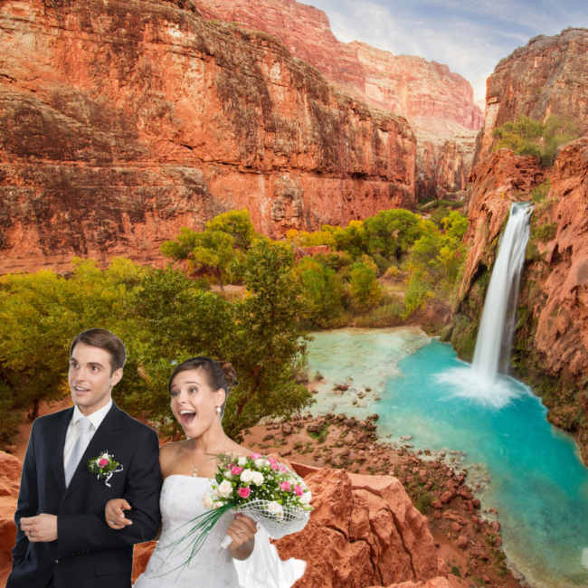 Arizona-virtual-Wedding