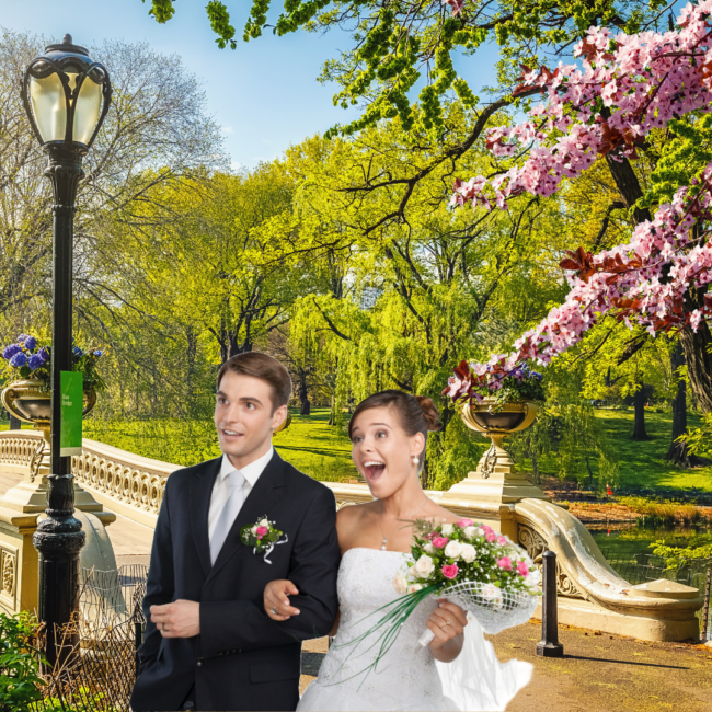 newyork-virtual-wedding