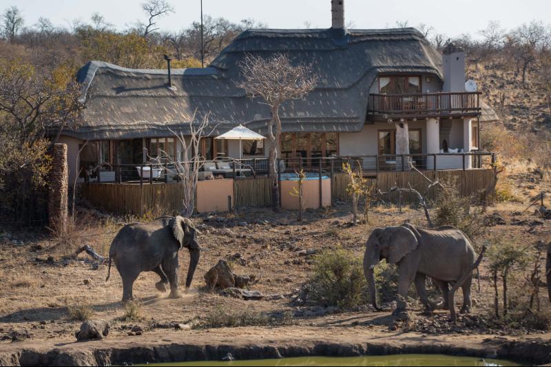 royal-madikwe-villa